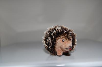 ep-hedgehog.jpg